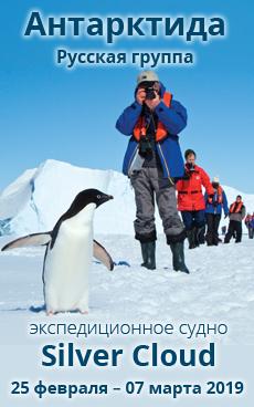 Роскошный круиз в Антарктиду