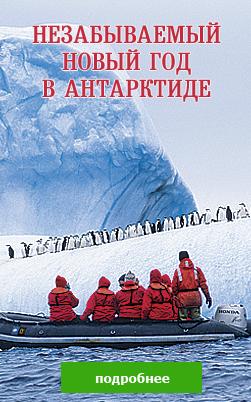Незабываемый новый год в Антарктиде